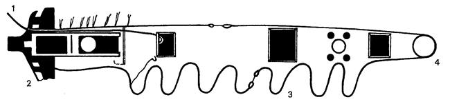 1 - Котвено въже 2 - Нос на кораба 3 - Турнвира 4 - Котвен шпил