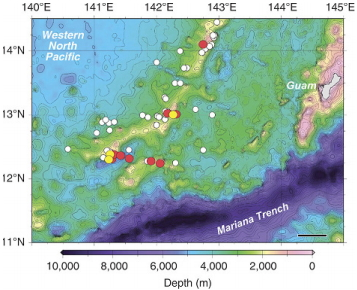 Локализация на размножителния регион на японската змиорка Anguilla japonica