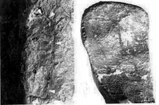 Щемпъл (stamp) върху вътрешната страна на лапите на Y-образни котви от потъналият кораб при Серче Лимани.