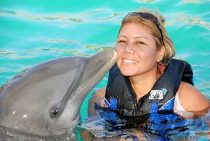 dolphin_swim