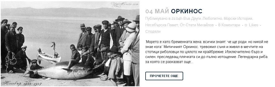 orkinos-32