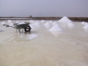 seawater farms eritrea salt works