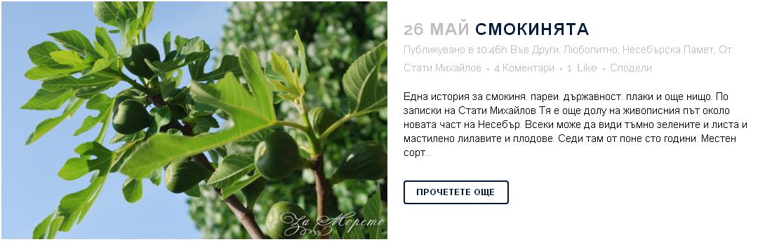 smokinqta-32