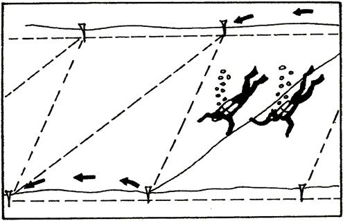 Търсене между две успоредни въжета с помоща на диагонално спомагателно въже - /S образно търсене/